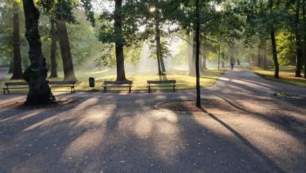 Attraktivierung des Fuß- und Radverkehrs im Clara-Zetkin-Park, Johannapark und Palmengarten